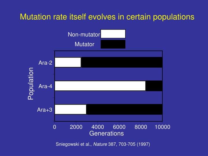 Mutation rate itself evolves in certain populations