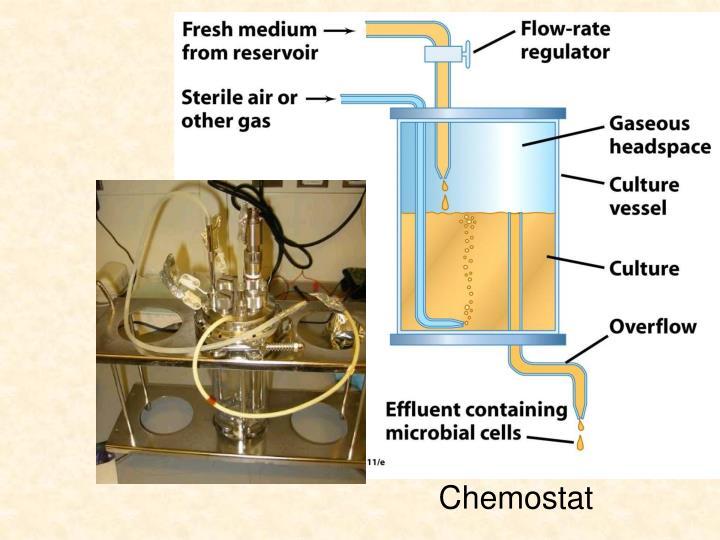 Chemostat