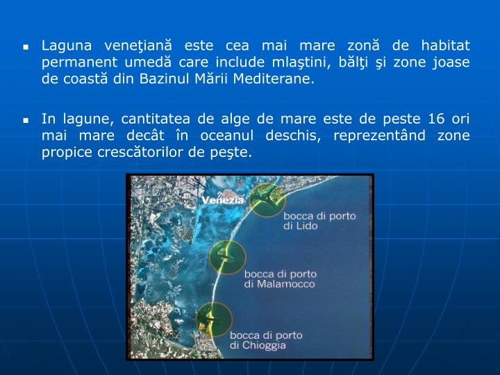 Laguna veneian este cea mai mare zon de habitat permanent umed care include mlatini, bli i zone joase de coast din Bazinul Mrii Mediterane.
