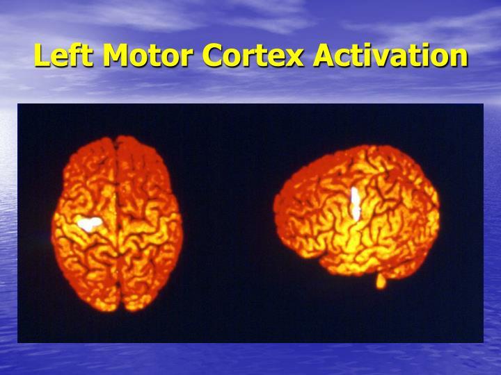Left Motor Cortex Activation