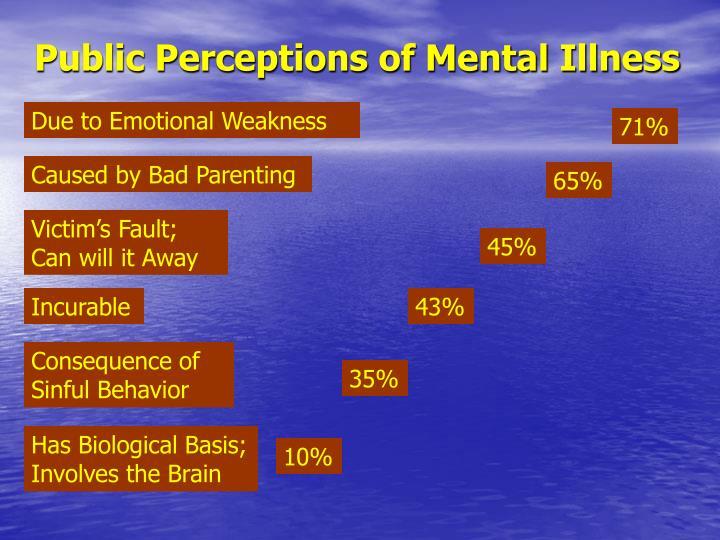 Public Perceptions of Mental Illness