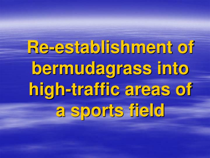 Re-establishment of bermudagrass into high-traffic areas of a sports field