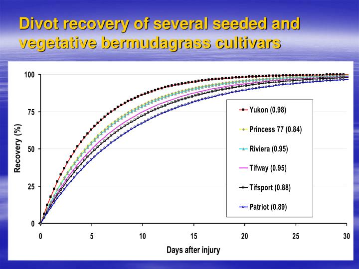Divot recovery of several seeded and vegetative bermudagrass cultivars