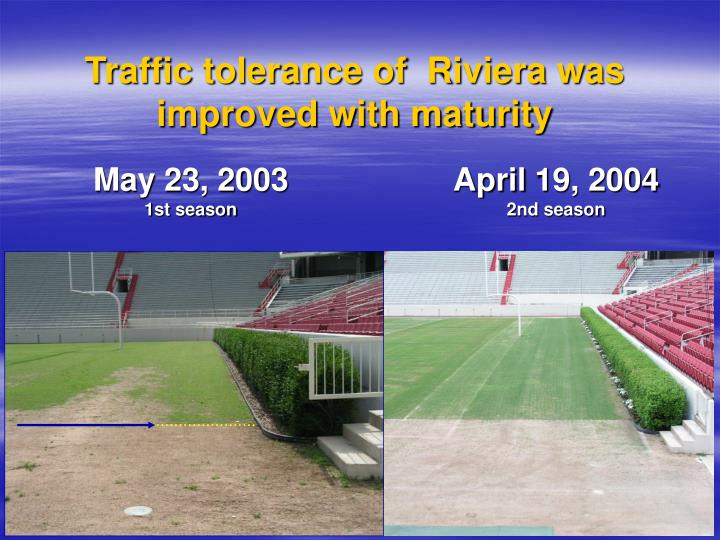 Traffic tolerance of  Riviera was improved with maturity
