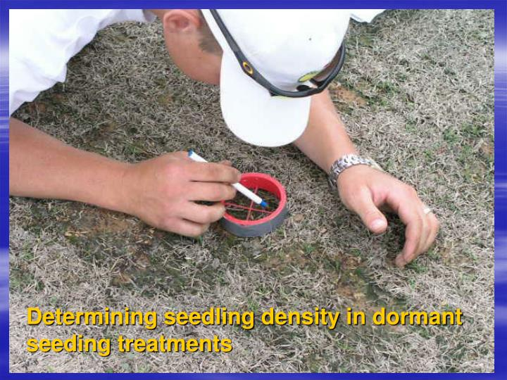 Determining seedling density in dormant seeding treatments