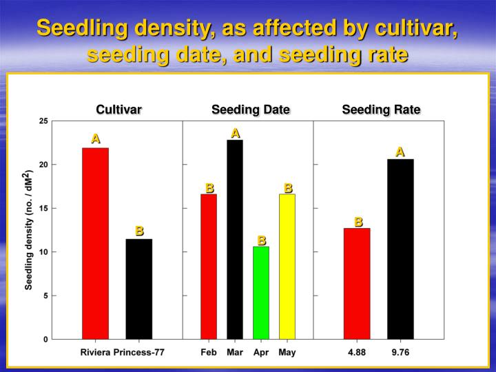 Seedling density, as affected by cultivar, seeding date, and seeding rate