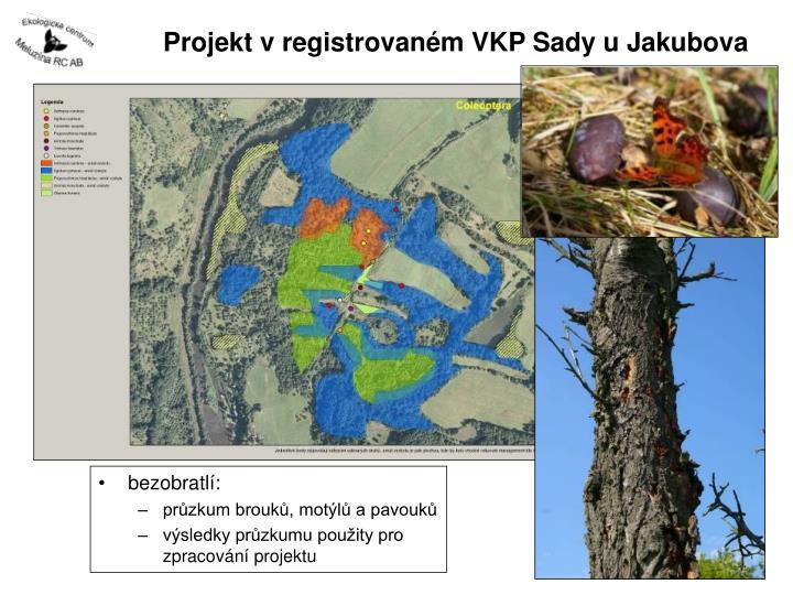 Projekt v registrovaném VKP Sady u Jakubova
