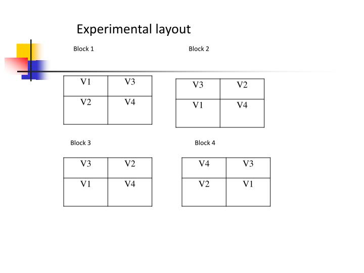 Experimental layout