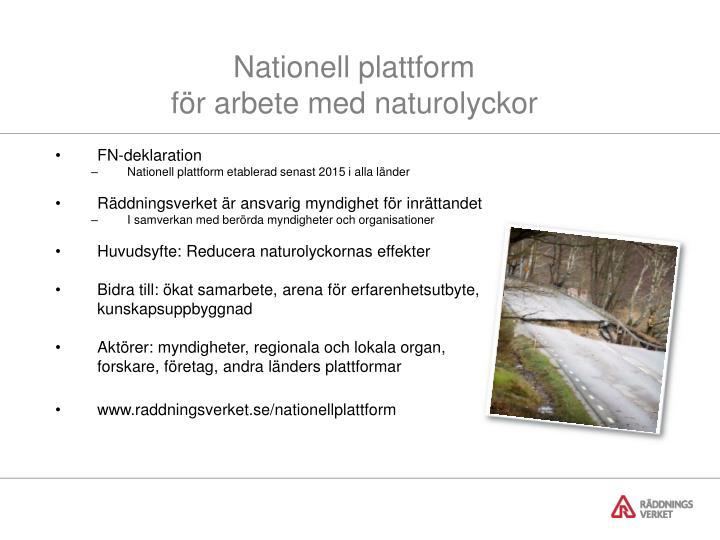 Nationell plattform