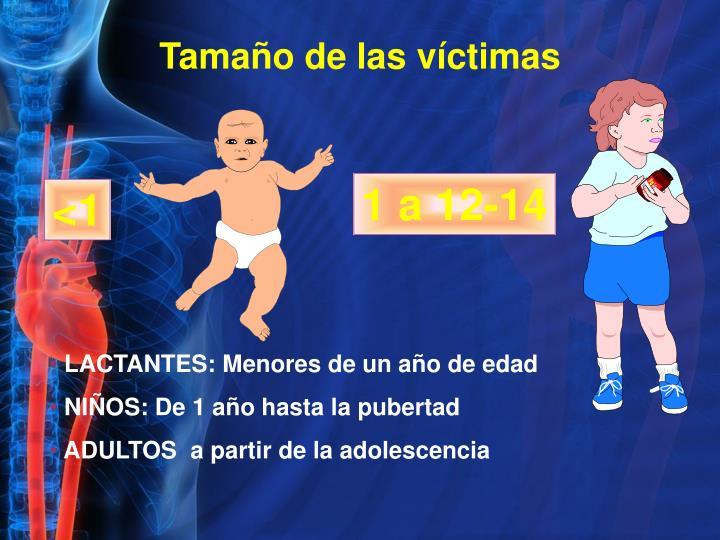 Tamaño de las víctimas