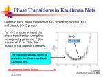 phase transitions in kauffman nets