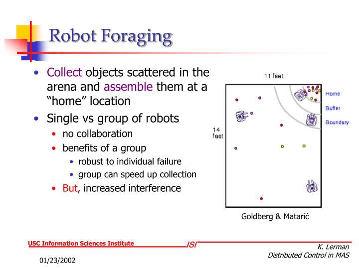 Robot Foraging