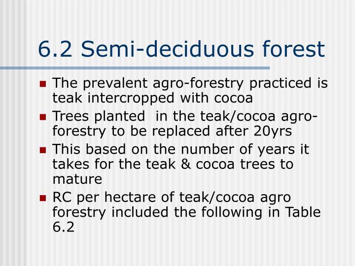 6.2 Semi-deciduous forest