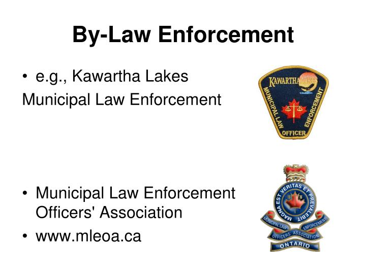 By-Law Enforcement