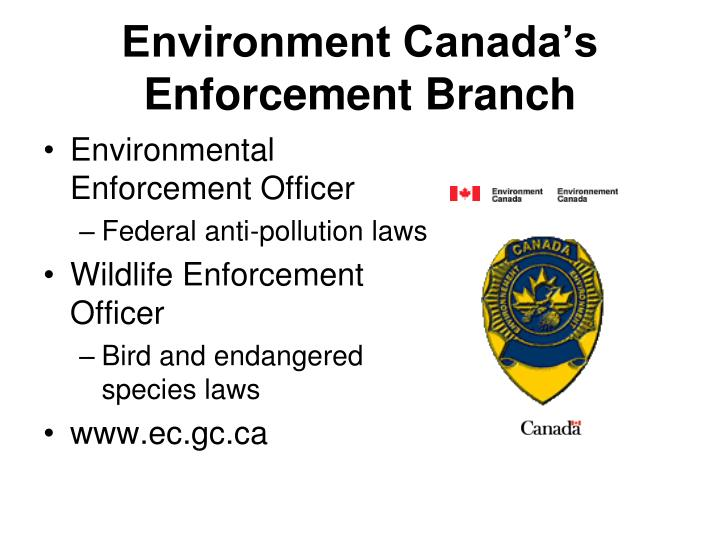 Environment Canada's Enforcement Branch