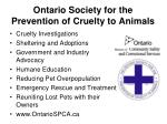 ontario society for the prevention of cruelty to animals
