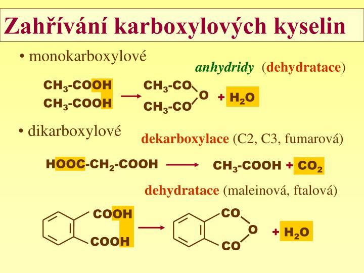 monokarboxylové