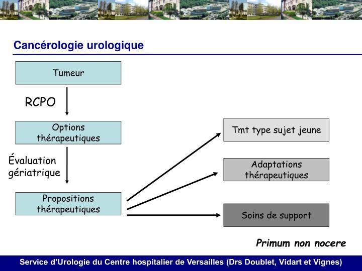 Cancérologie urologique