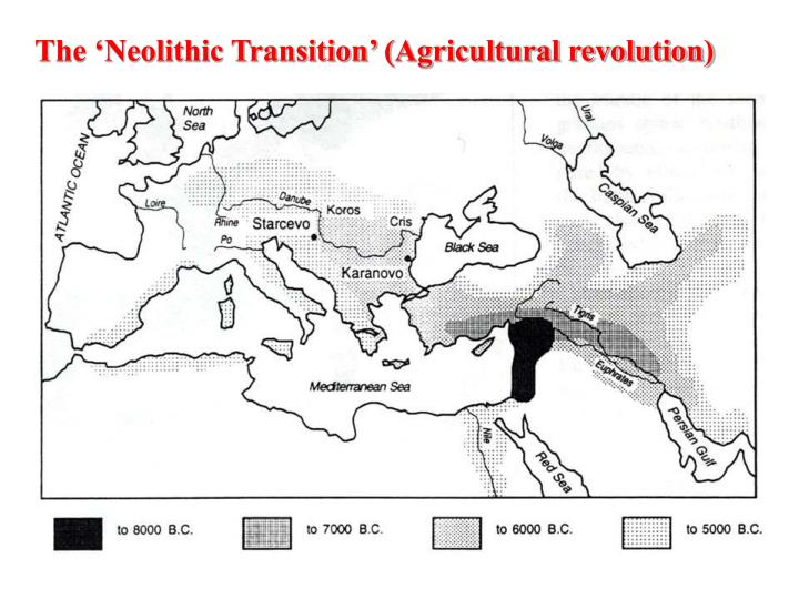 The 'Neolithic Transition' (Agricultural revolution)