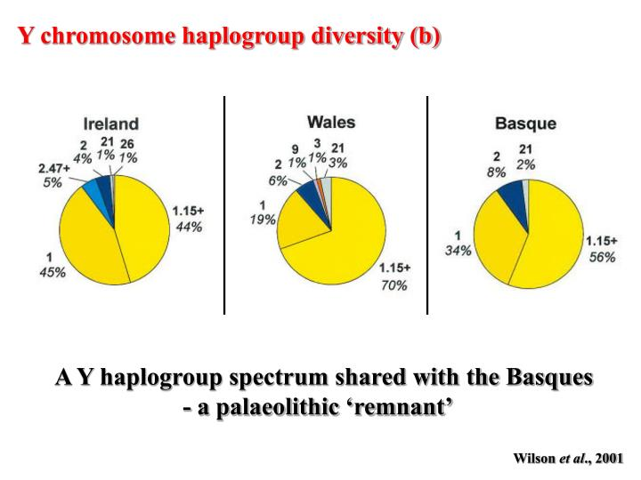Y chromosome haplogroup diversity (b)