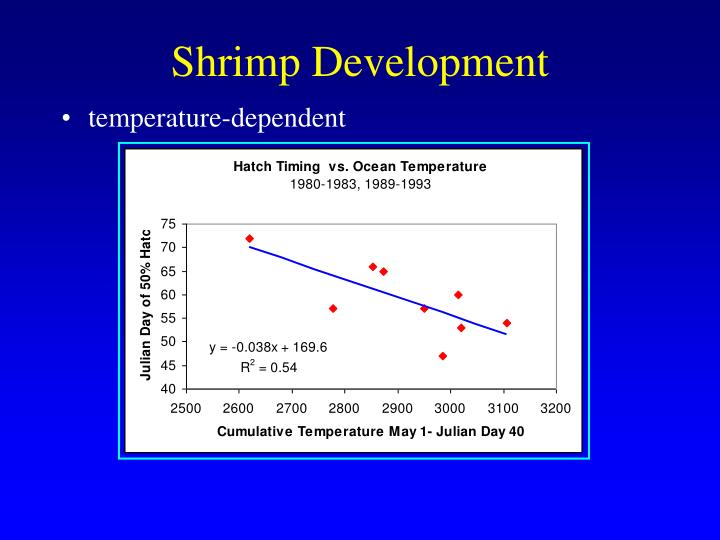 Shrimp Development