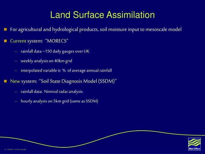 Land Surface Assimilation