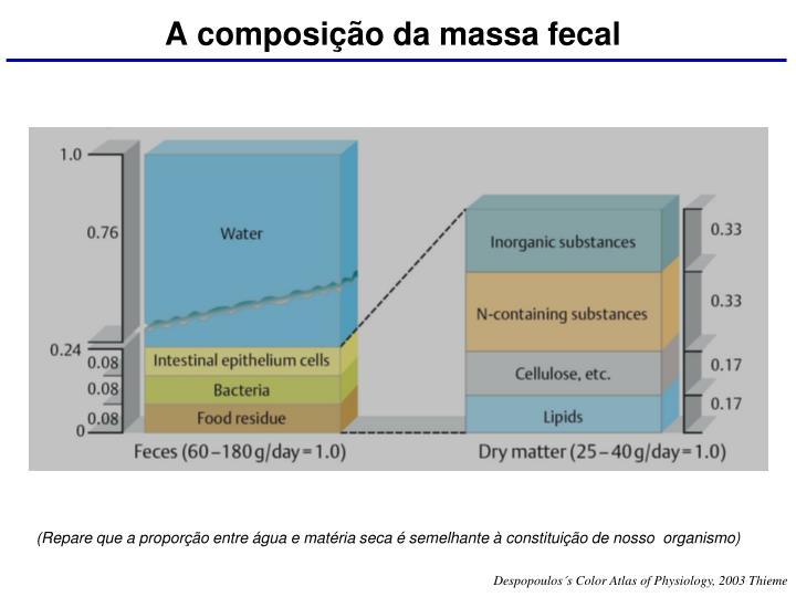 A composição da massa fecal