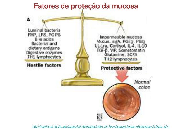 Fatores de proteção da mucosa