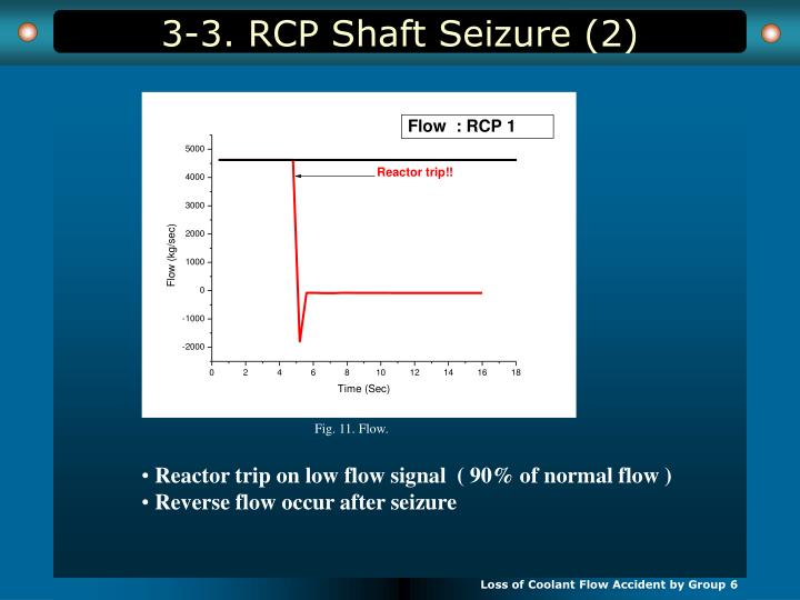 3-3. RCP Shaft Seizure (2)