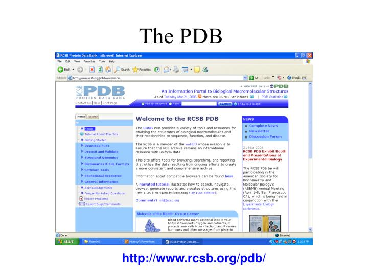 The PDB