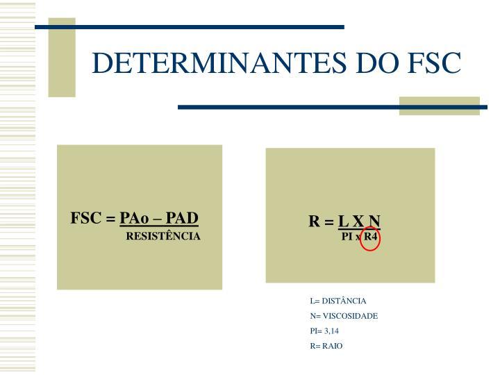 DETERMINANTES DO FSC