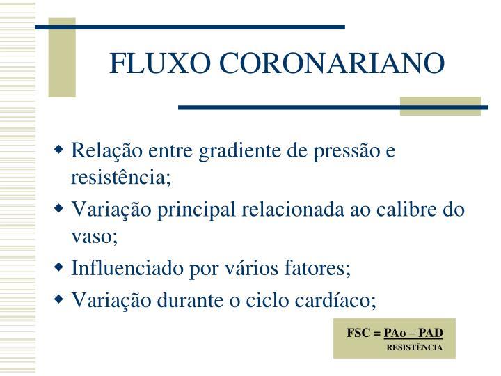 FLUXO CORONARIANO