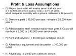 profit loss assumptions1