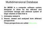 multidimensional database1
