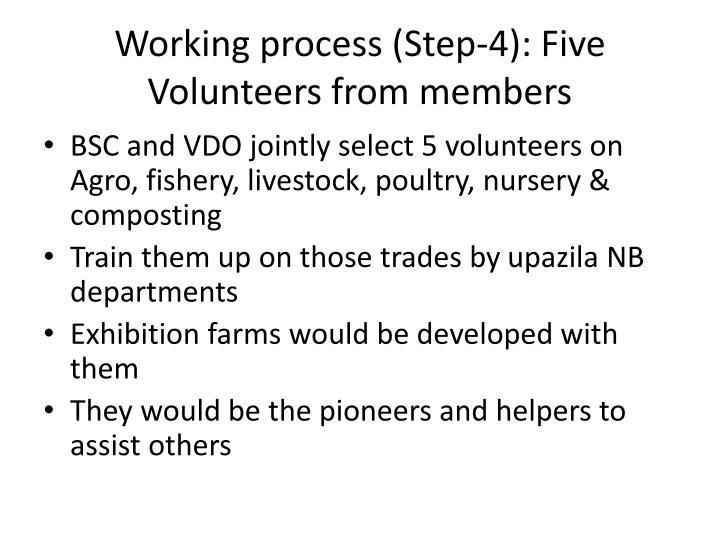 Working process (Step-4): Five Volunteers from members