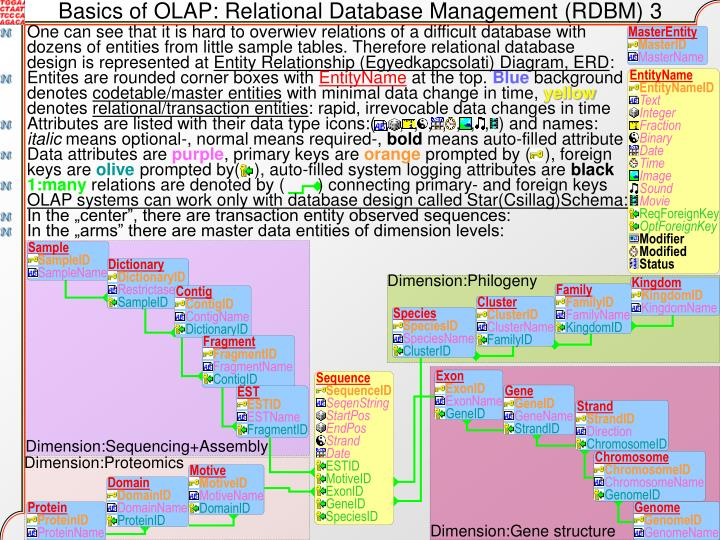 Basics of OLAP: Relational Database Management (RDBM) 3