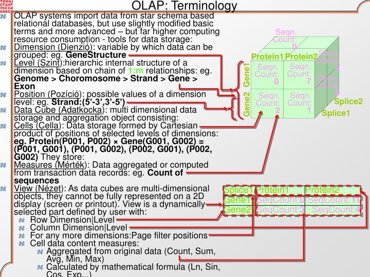 OLAP: Terminology