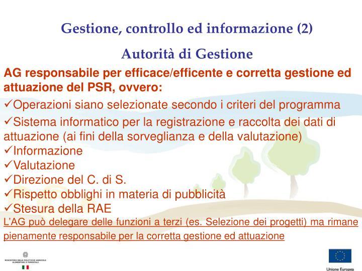 Gestione, controllo ed informazione (2)
