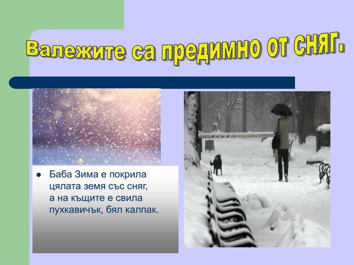 Валежите са предимно от сняг.