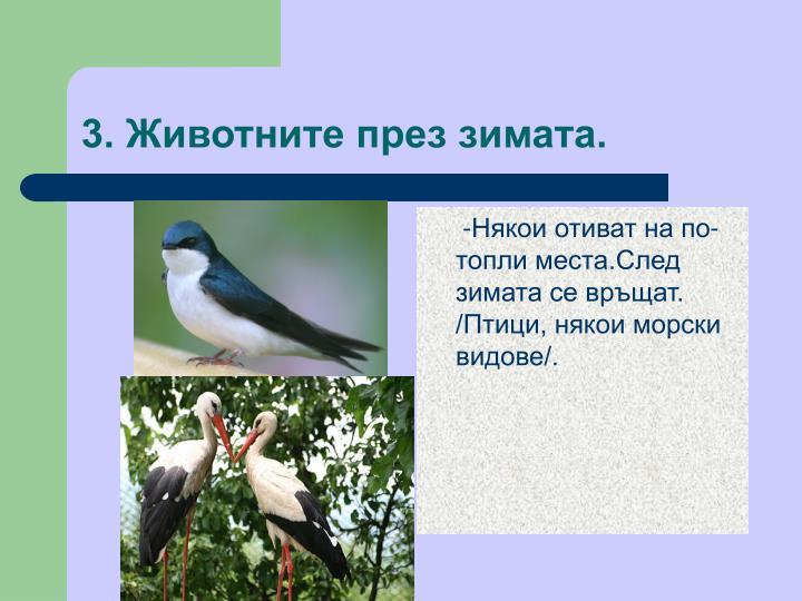 3. Животните през зимата.