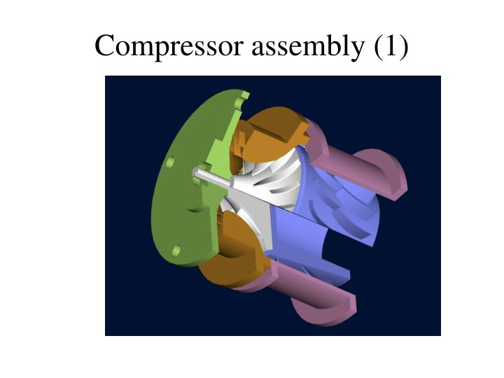 Compressor assembly (1)