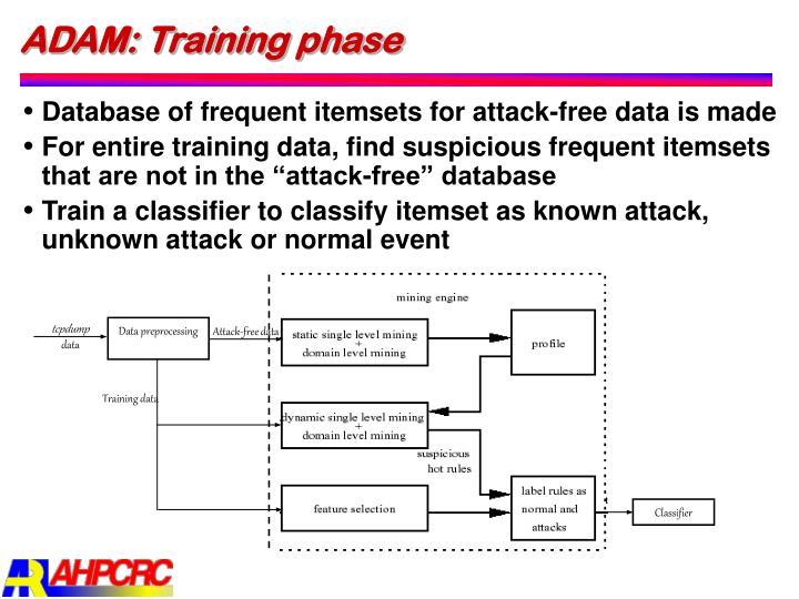 ADAM: Training phase
