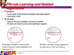 pn rule learning and related algorithms