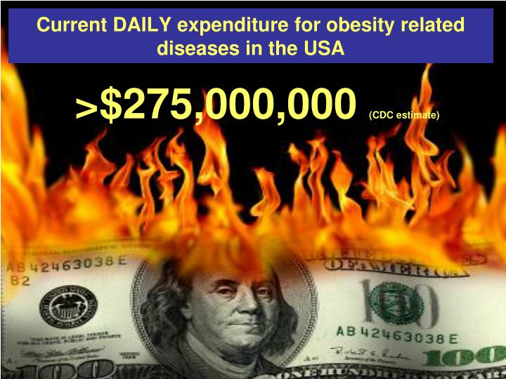 Current DAILY expenditure for obesity related diseases in the USA