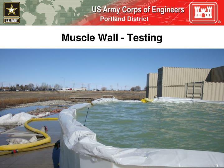 Muscle Wall - Testing