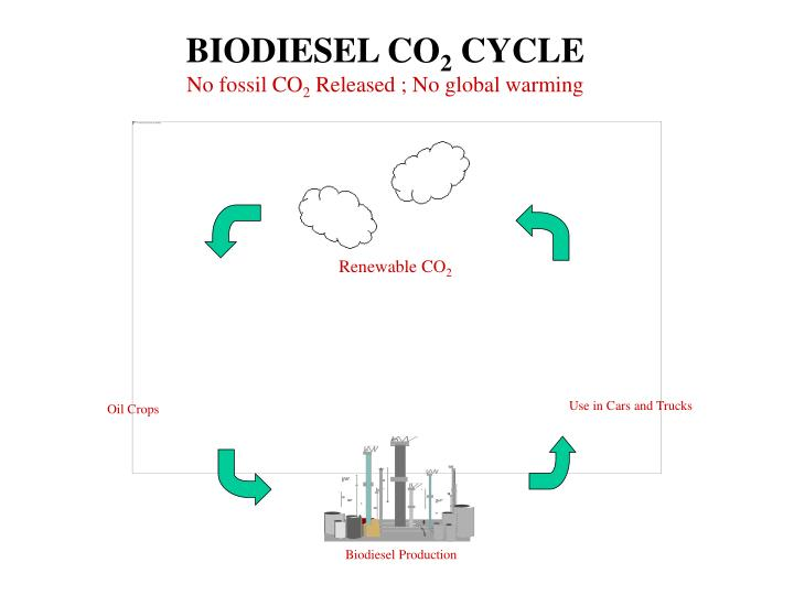 BIODIESEL CO