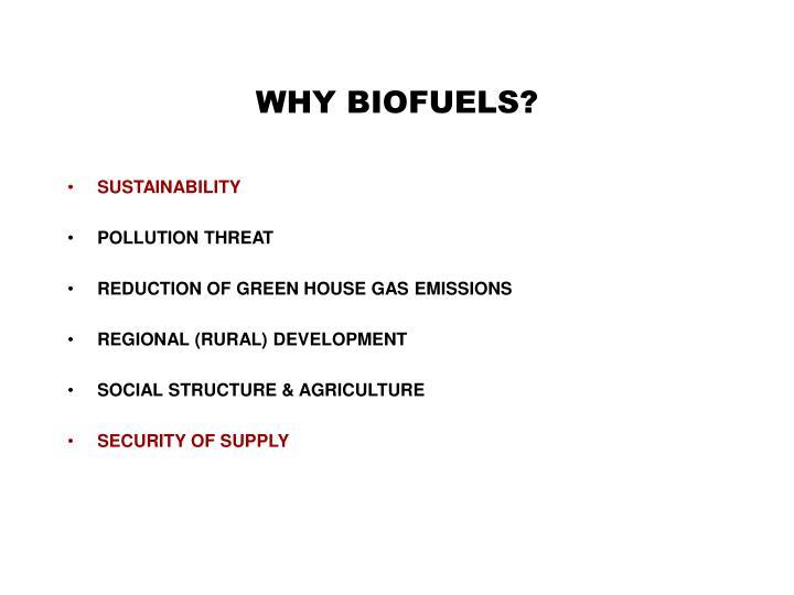 WHY BIOFUELS?