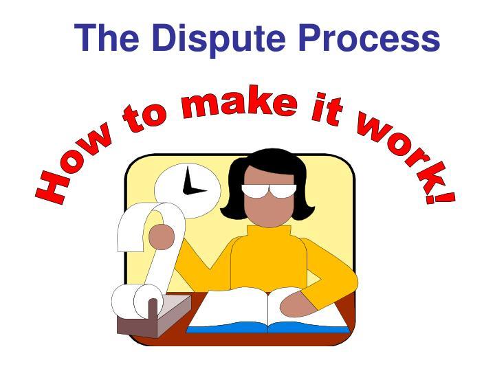 The Dispute Process