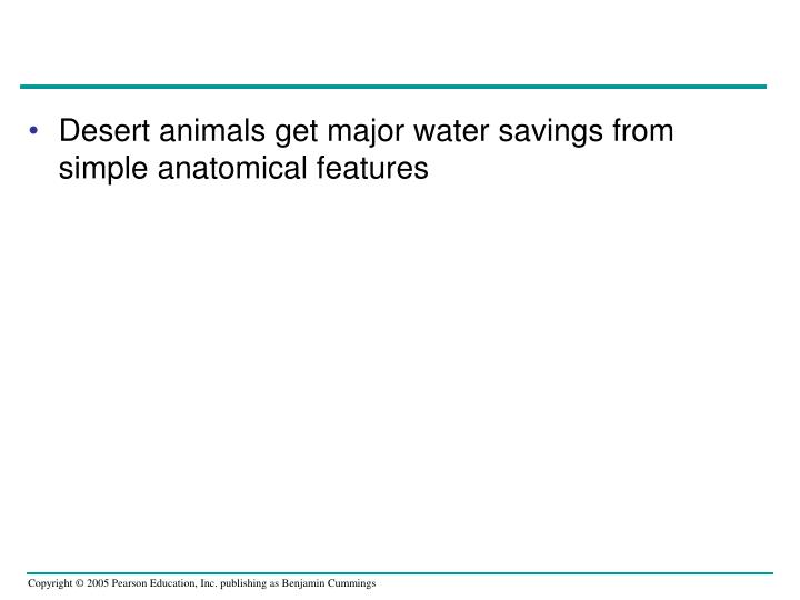 Desert animals get major water savings from simple anatomical features
