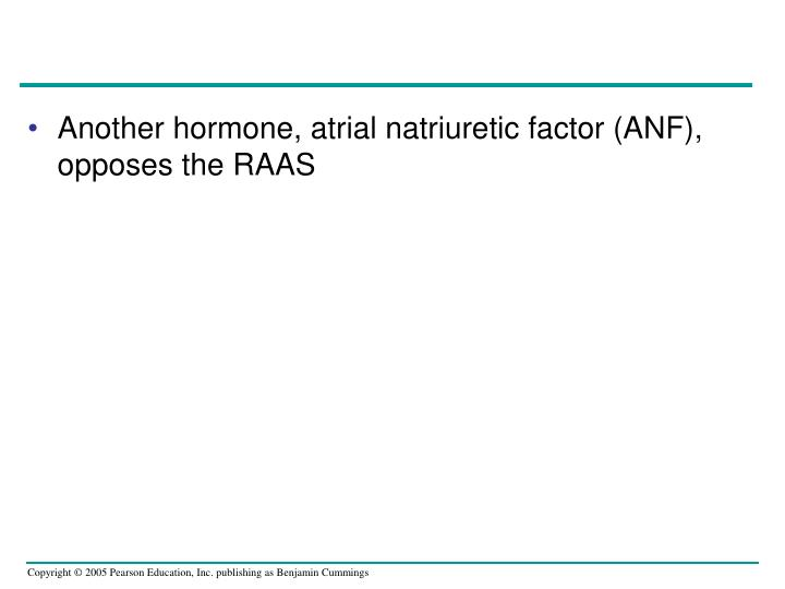 Another hormone, atrial natriuretic factor (ANF), opposes the RAAS